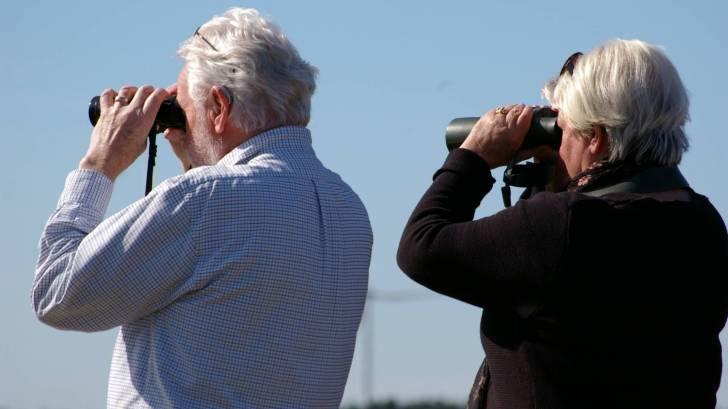 older couple looking thru binoculars