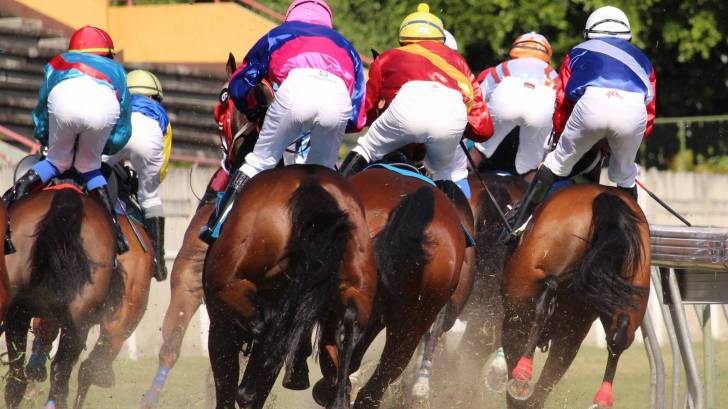 horse race on dirt track,