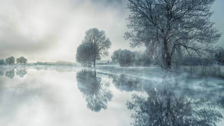 cold winter day, foggy and icy