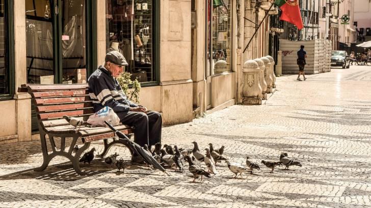 older man feeding birds on a bench