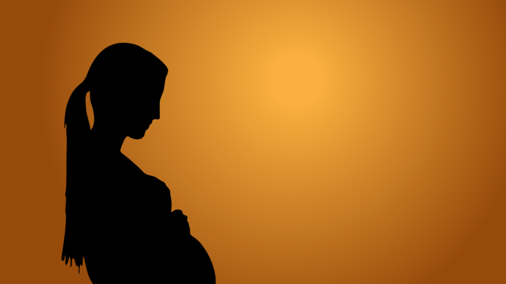 silhoutte of a prgnant mom