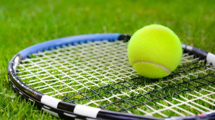 grass court, tennis ball and racket