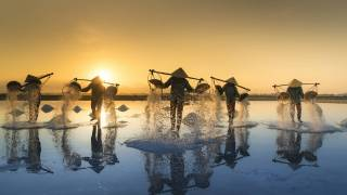 Vietnam salt harvestors in water