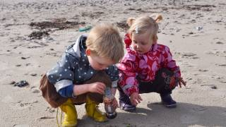 two young children on a danish beach looking for shells,
