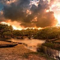 Nicaragua river bank